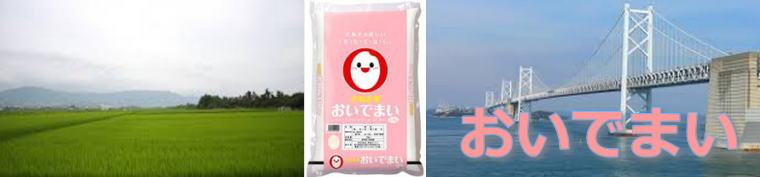 香川県のお来 おいでまい 特徴・通販ランキング