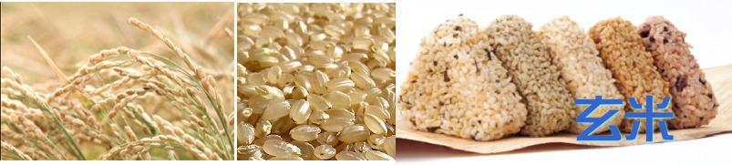 発芽玄米 ランキング 通販